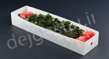 باکس گل با کارتن پلاست دژگستر